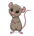 cartoon rat isolated on white background vector image