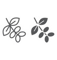 coffee tree branch line and glyph icon coffee vector image