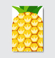 cut pineapple template card slice fresh fruit vector image vector image