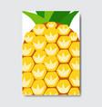 cut pineapple template card slice fresh fruit vector image