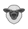 cute sheep face on white background vector image