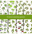 set seamless pattern with tree branches vector image