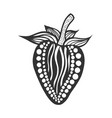 strawberry black and white vector image vector image