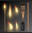 burning beach bamboo torch burning in the dark vector image