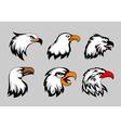Bald eagle mascot heads vector image