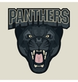 Angry Panther Sport team emblem vector image vector image