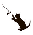 black silhouette playing cat isolated kitty vector image vector image