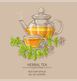 cup of oregano tea in teapot vector image vector image