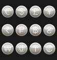 currency coins metal platinum with highlights set vector image