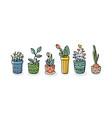 doodle plants in pots set sketch style vector image