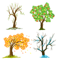 seasons of tree vector image vector image