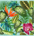 tropical leaves palm trees dieffenbachia and vector image vector image
