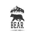 bear logo logotype vector image vector image