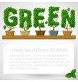 Green fresh houseplant mock up vector image vector image