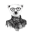Hand drawn dressed up hipster bear in glasses vector image