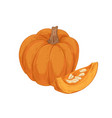 orange round pumpkin and cut piece with seeds vector image