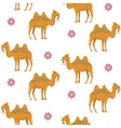 Seamless Pattern with Camel vector image vector image
