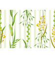 Seamless pattern with herbs and cereal grass