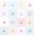 sixteen abstract feminine signs or logo vector image vector image