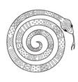 adult doodle coloring book page snake antistress vector image vector image