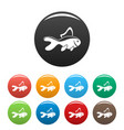 aquarium fish icons set color vector image