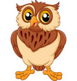 cartoon owl isolated on white background vector image vector image