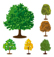 collection of isolated trees vector image vector image
