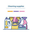 household cleaning supplies vector image