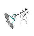 hummingbird line icon outline sign linear vector image vector image