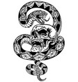 snake coiled round skull black and white vector image vector image