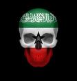 somaliland flag skull vector image vector image