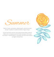 summer poster with drawn plant vector image vector image