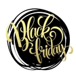 Black friday golden text design vector image