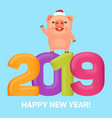 little funny pig with sign vector image vector image