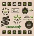 natural logo vector image vector image