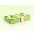 Packs of dollars money on green background vector image vector image