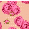 Seamless peony roses and polka dot vector image