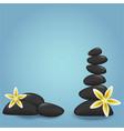 set of massege stones diy vector image