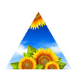 Triangular summer floral background vector image vector image