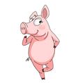 Cheeky pig vector image