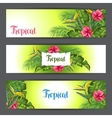 Banners with tropical leaves and flowers Palms vector image vector image