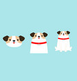 cute dog set face body sitting puppy red collar vector image