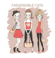 fashion girls cats vector image vector image