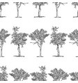 seamless background drawn trees vector image