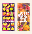summer fruit vertical banners vector image