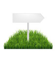 wooden signs with green grass vector image