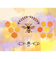 Background for honey with bee and cells vector image