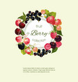 Berry vertical banner vector image vector image