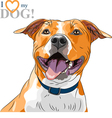 sketch smiling dog American Staffordshire Terrier