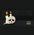 day of the dead banner vector image vector image